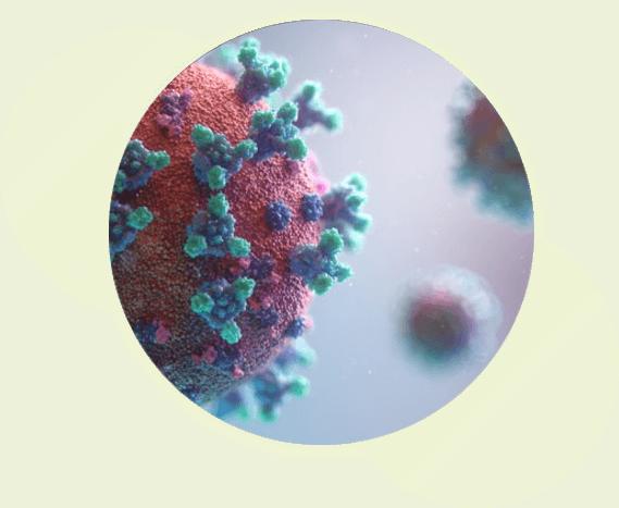 vibacil_disclaimer_health_benefits